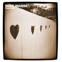 DANIEL MULHERN / Pigeon coup-0